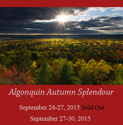 Algonquin-announce-2015