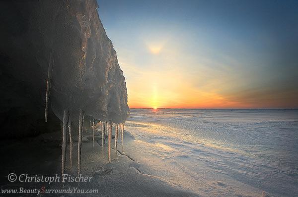 Frozen-Beauty-600-sigjpg