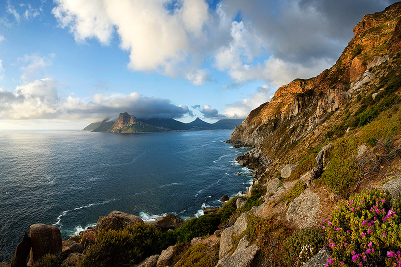 A majestic view of dramatic coastal mountains, Chapmans Peak and Hout Bay as seen from Chapmans Peak Drive, Cape Peninsula, South Africa. Warm afternoon light spotlights this beautiful scene with a complement of beautiful pink flowers from the Rushia genus.
